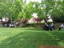 Wilson Avenue Mini Park